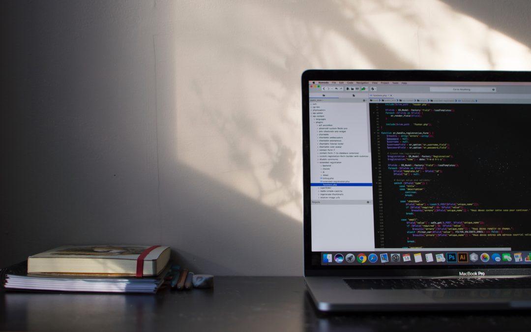 Audit d'un logiciel : la continuité de l'exploitation est-elle garantie en cas de départ du développeur ?